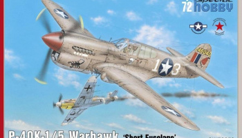 1/72 P-40K-1/5 Warhawk Short Tail