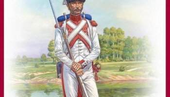 1/16 Imperial Dutch Grenadier. Napoleonic Wars.