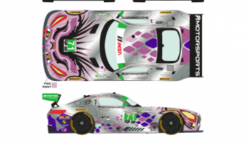 Mercedes AMG GT3 71 12 Horas Sebring 2018 1/24 - Racing Decals 43