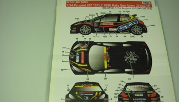 Peugeot 207 EPIU #206 Rally San Remo 2014 (2nd) - Studio27